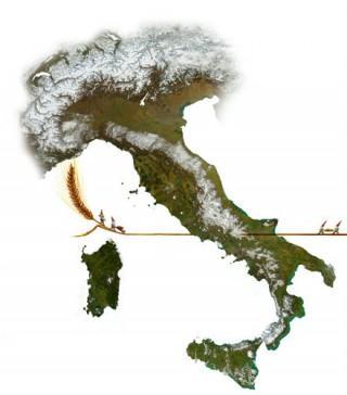 pasta biologica rivenditori Trentino Alto Adige